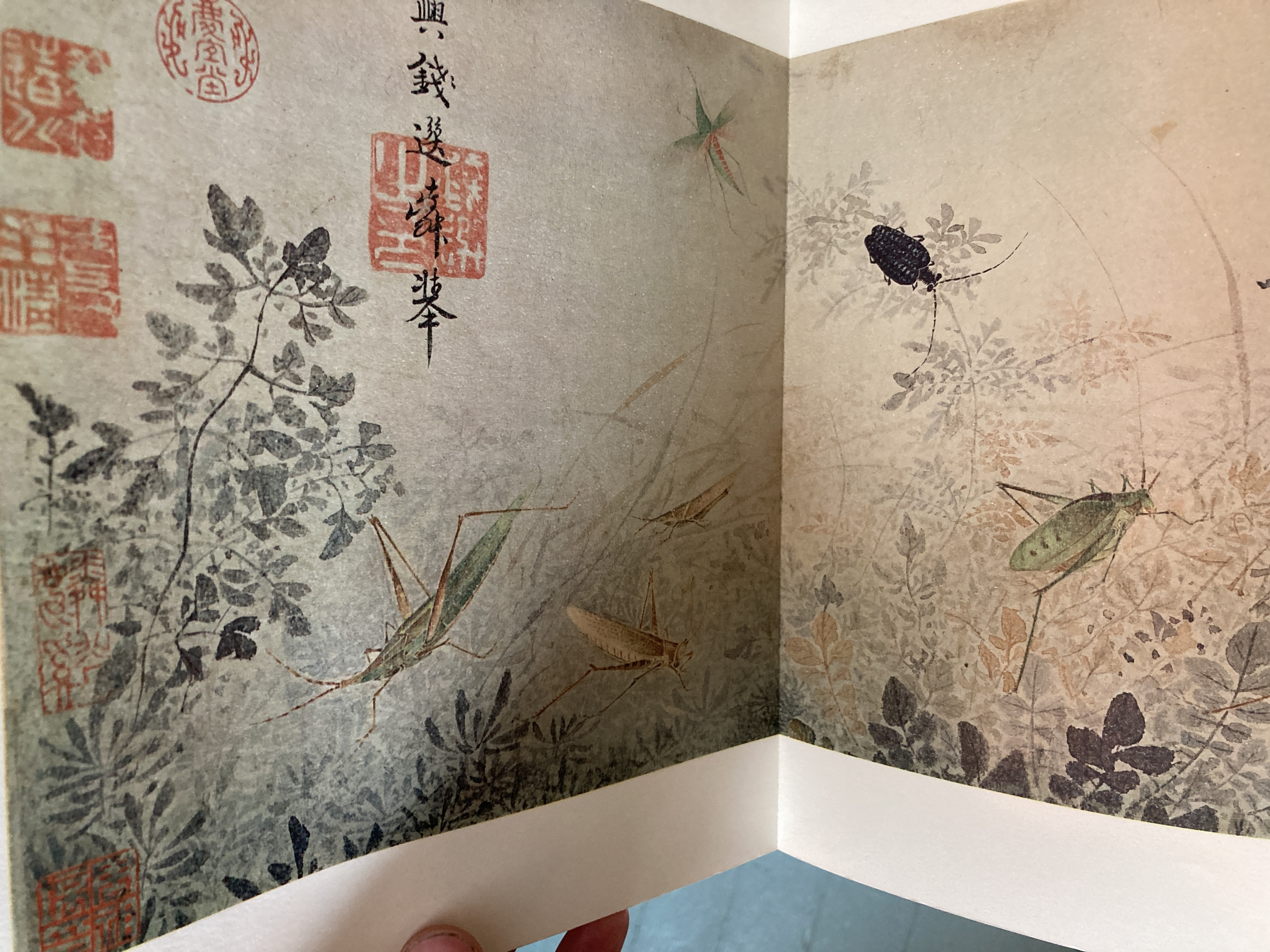 Sze, The Tao of Painting