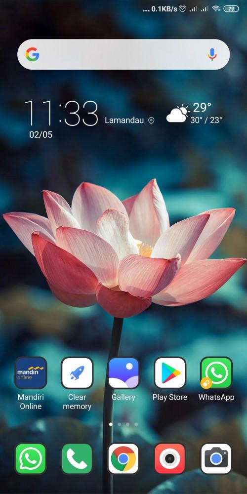 Screenshot 2020 05 02 11 33 02 863 com.miui.home